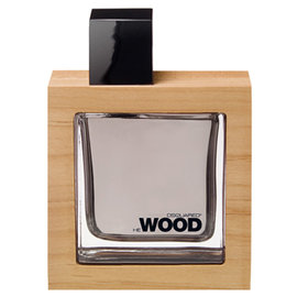 DSQUARED2 HE Wood 男性淡香水 100ML